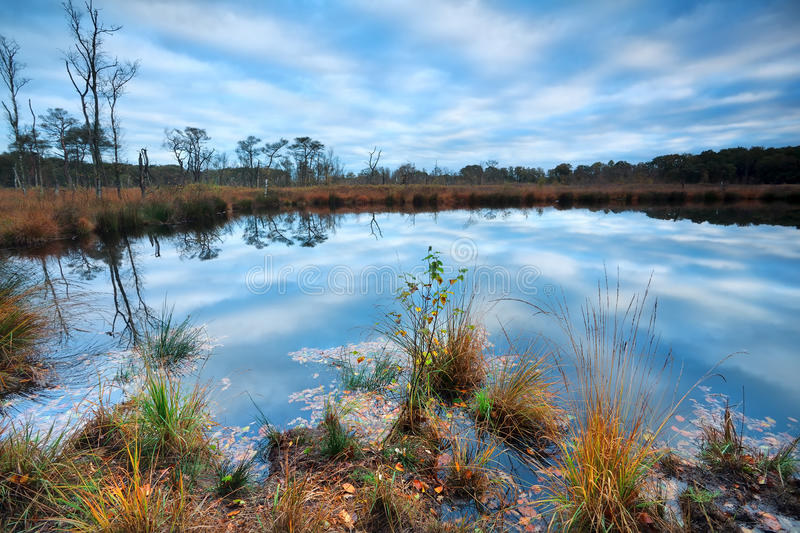 Download Morning Blue Sky Reflected In Wild Lake Stock Image - Image of outdoors, nature: 34538807