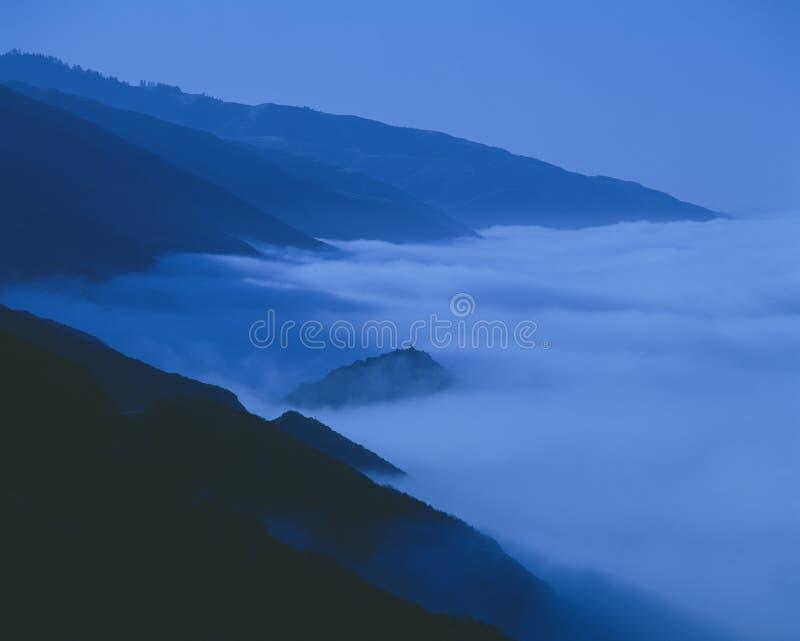 Morning Coastal Fog Stock Image