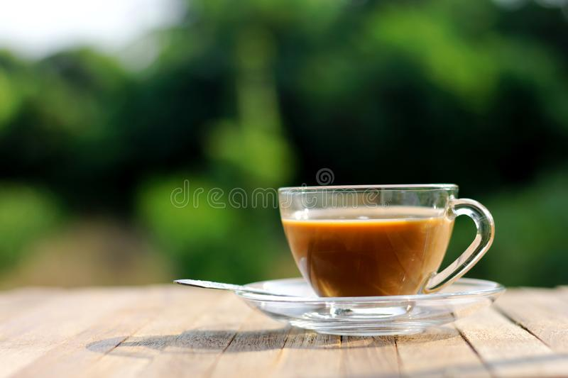 Morning coffee cup on wood table with blur green nature background.  royalty free stock photo
