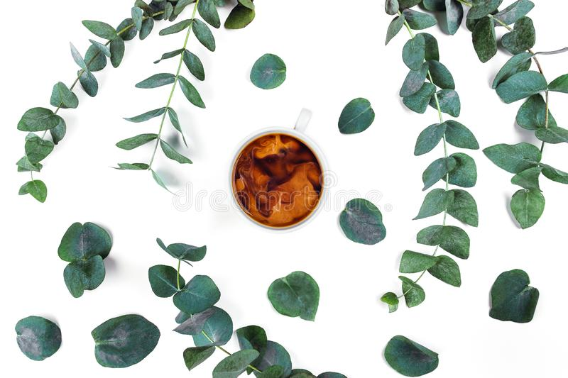 Morning Cup of coffee with milk and a beautiful eucalyptus on white background, top view. Isolated white background with a Cup of coffee surrounded by royalty free stock image