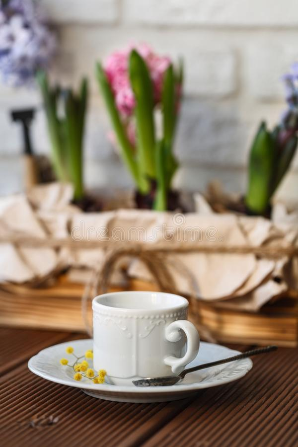 One morning Cup of coffee or tea royalty free stock images