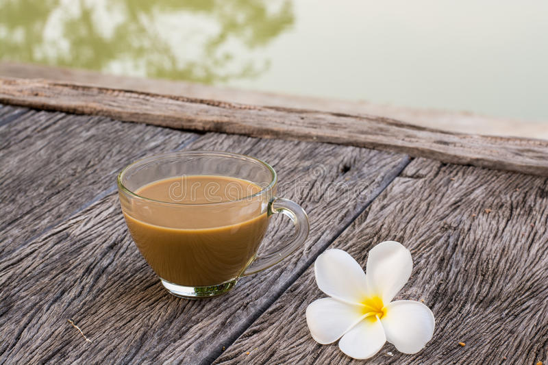Morning cup of coffee waterfront royalty free stock photo