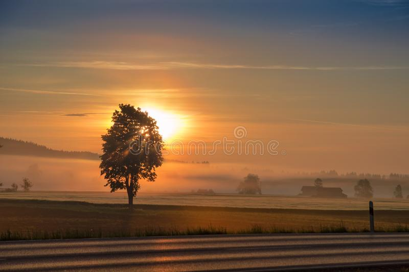 Morning dawning sun over hazy field and country road. Morning dawning sun and rising sunbeams over hazy field and country road stock photos