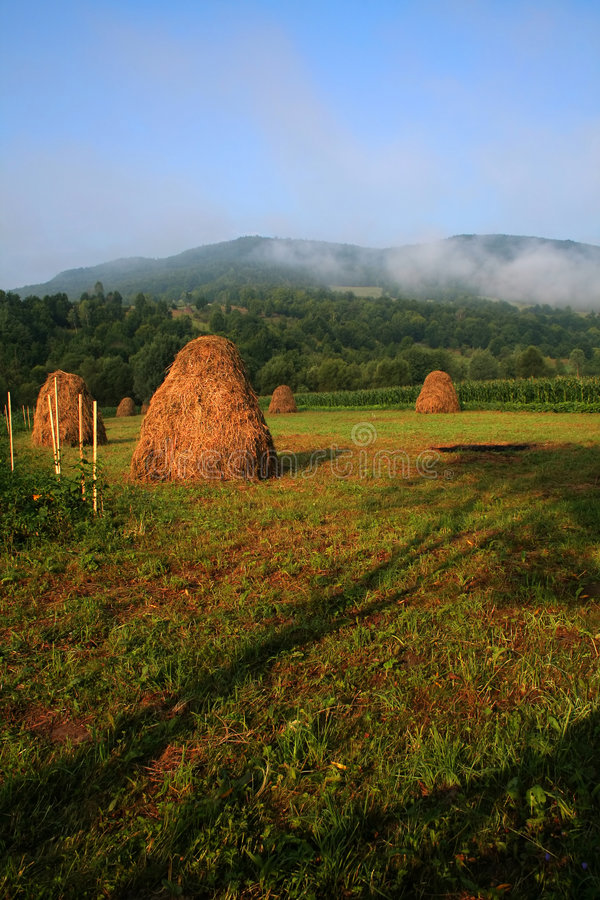 Download Morning Day At The Country Side Stock Photo - Image: 1101992