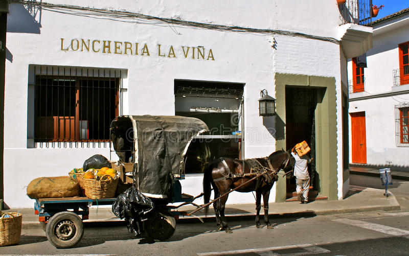 Morning delivery by horse cart, Popayan stock image