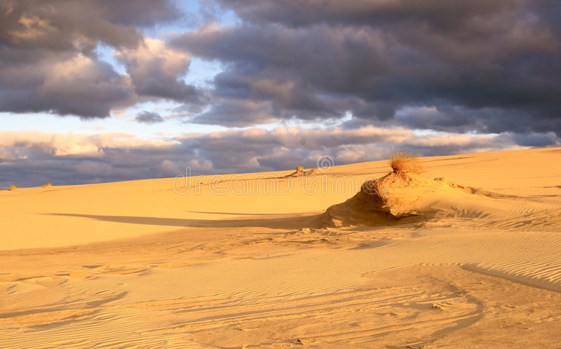 Morning in the dunes stock photography