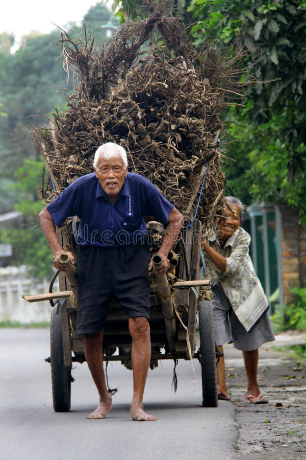 Firewoods Seeker. Old man and his wife bring the fire woods. The firewoods used by their fuel at home. This photo was taken at Kartasura, Sukoharjo, Indonesia. 2 royalty free stock images