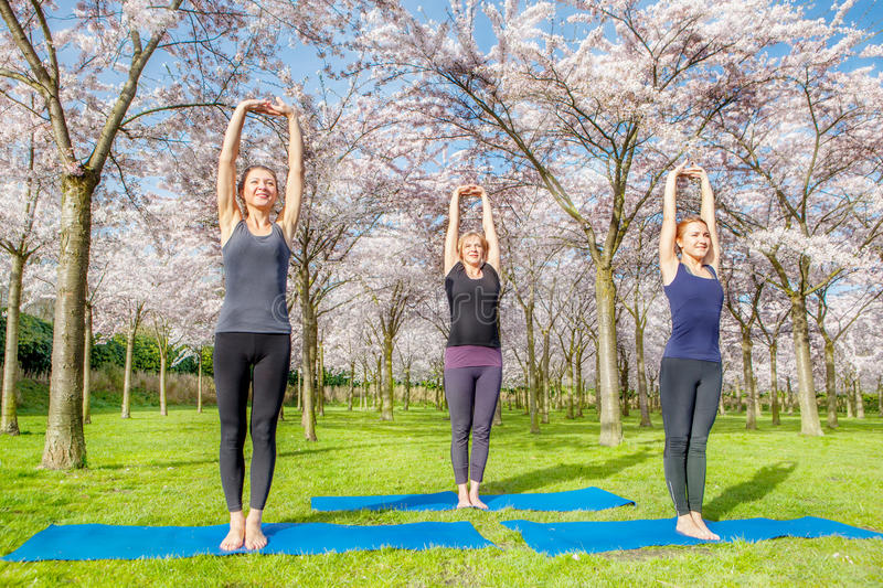 Morning exercise. Three young women doing morning exercise in a spring blooming park stock images