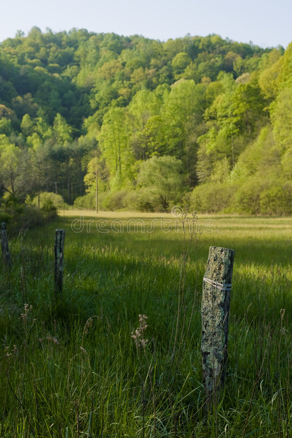 Free Morning Fence Field Royalty Free Stock Photography - 5376217
