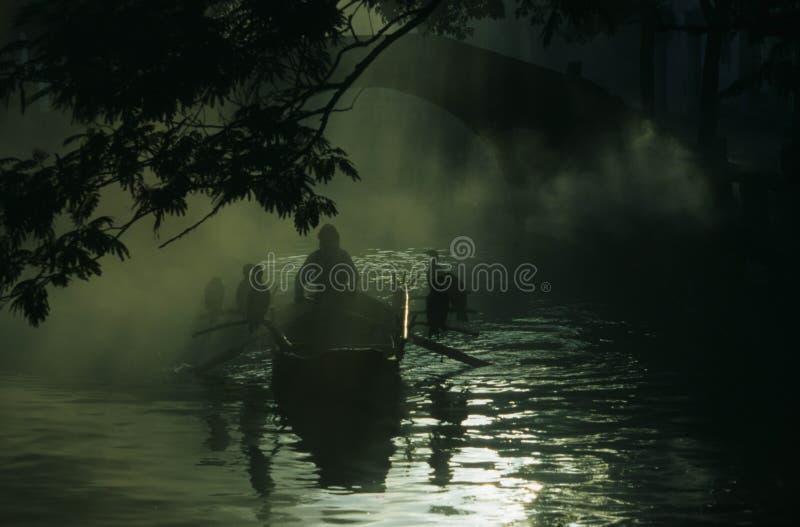 In morning fog stock images