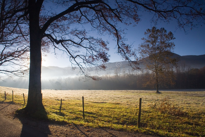 Download Morning Fog Cades Cove stock photo. Image of pasture, clouds - 1550304