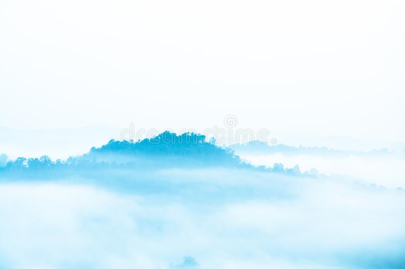 Morning fog covering the jungle royalty free stock photo