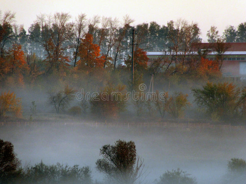 Morning fog over a pond stock images