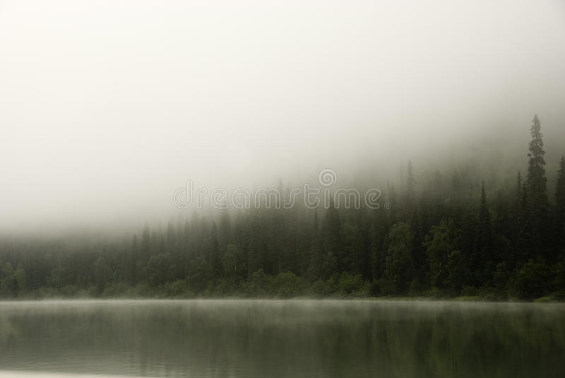 Morning fog over the river royalty free stock photo