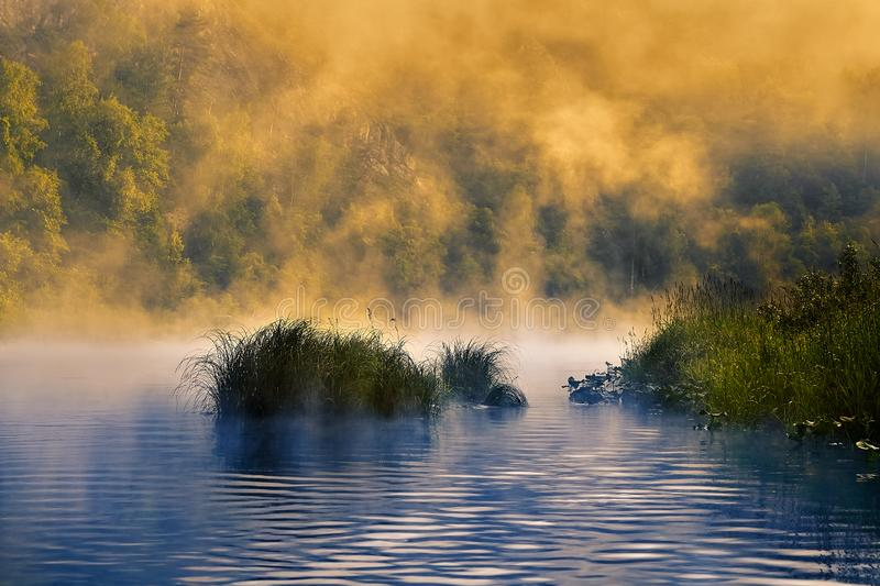 Morning fog over a quiet river royalty free stock photo