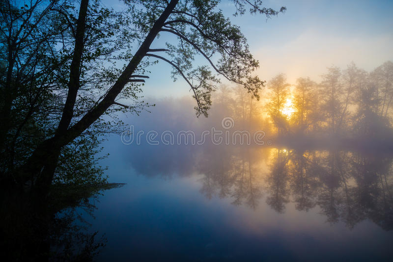 Morning fog on a river royalty free stock images