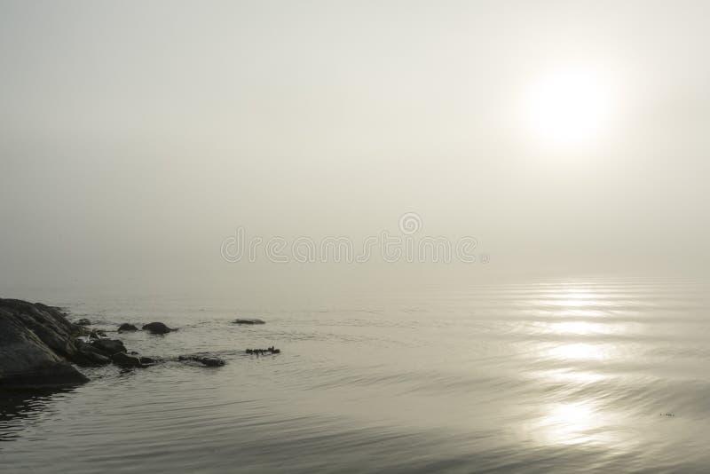 Morning fog sunny morning Stockholm archipelago. Morning fog in Stockholm archipelago summertime. Gålö, Sweden stock image