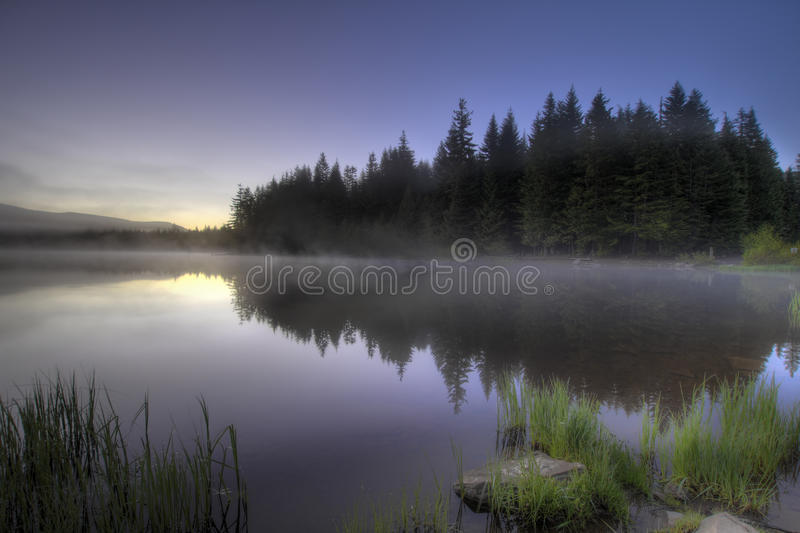 Download Morning Fog At Trillium Lake Stock Image - Image of scenic, grass: 14727269