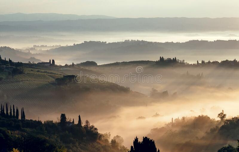 Morning fog valley with olive orchards and vineyards. Misty landscape scene, with gardens, farms, fields.  stock image