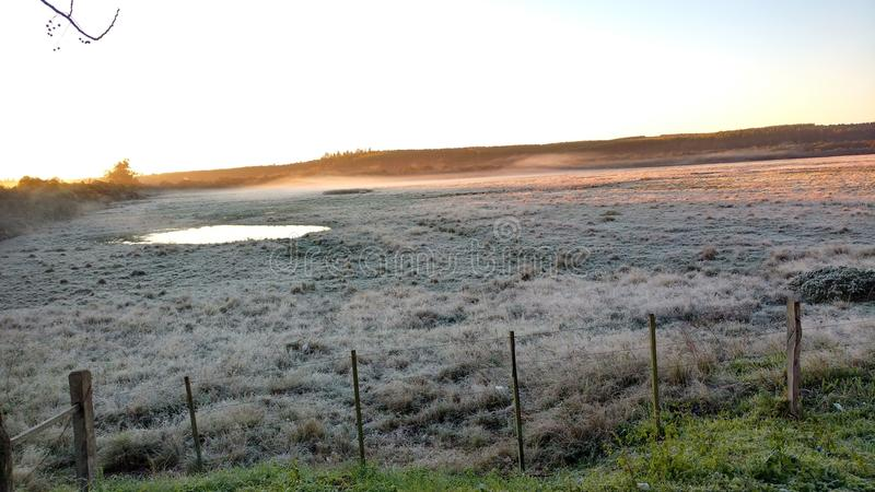 Morning with frost. Morning frost, very cold, field was frozen, good morning cold, brazil, south royalty free stock images