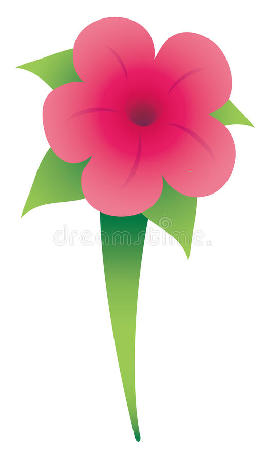 Download Morning glory flower stock illustration. Image of center - 10547805