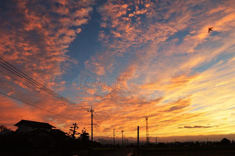 Morning glow. Crossing birds flocking in the sky dyed red in the morning glow and the sound of the water flowing in the Chikugo River can be heard. Today is a royalty free stock photos