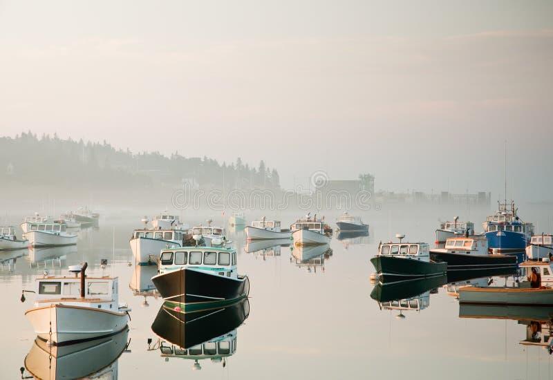 Morning Harbor Mist Stock Images