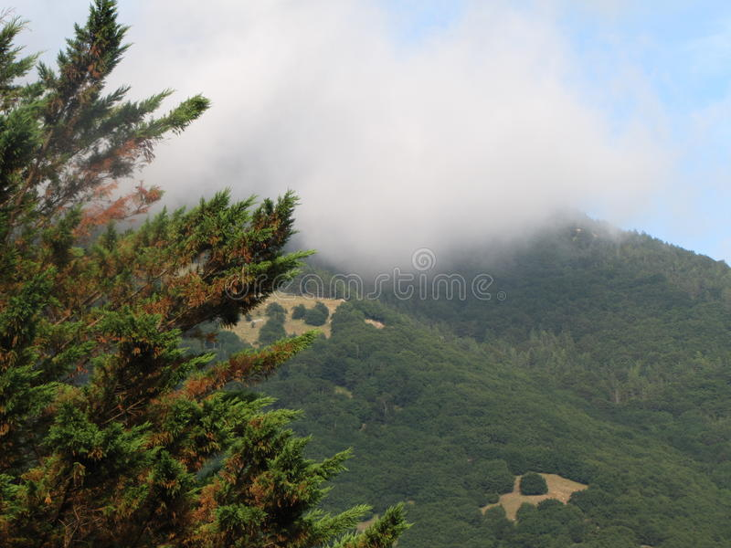 The morning haze in the mountains stock photo