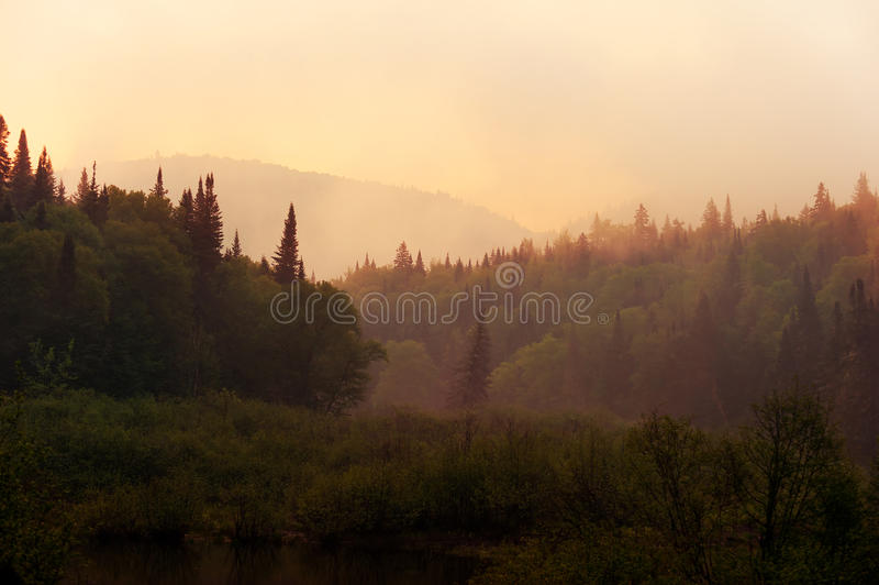 Download Morning Haze Over The River Stock Image - Image: 29530407