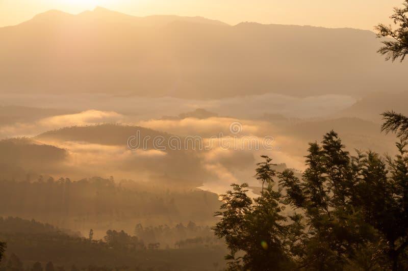 Morning Haze Royalty Free Stock Photos