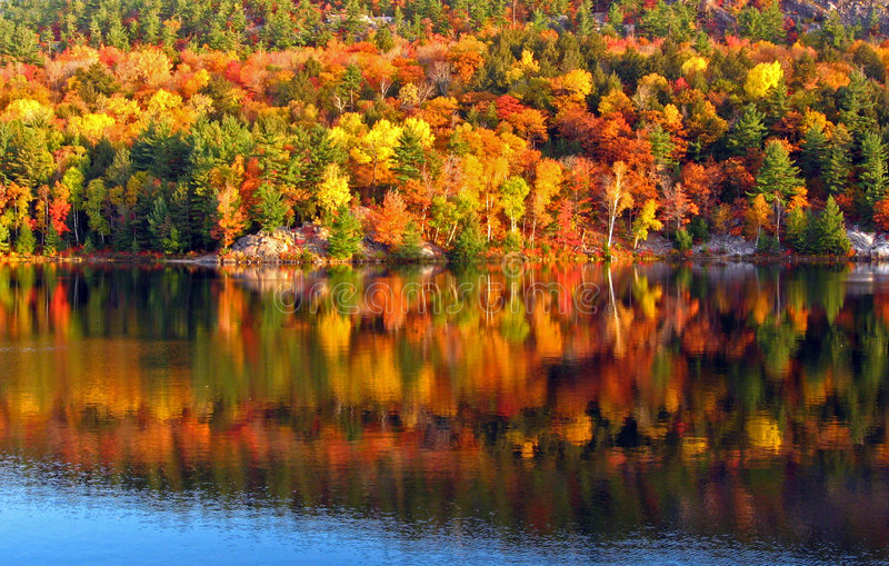Morning at the lake 3 stock image