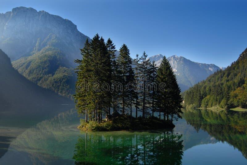 Morning at the lake royalty free stock image
