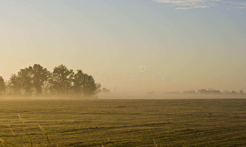 Download Morning Landscape Of Missouri Farm Field Stock Photo - Image: 16964478