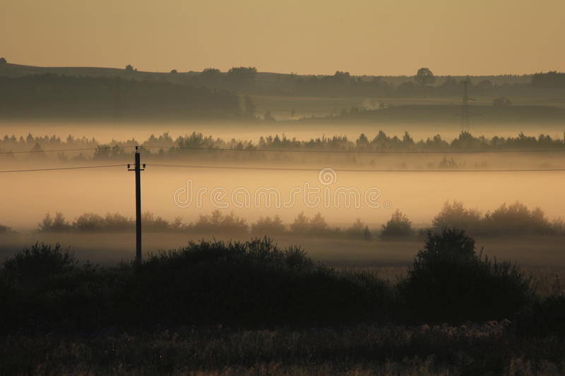 Morning landscape in summer thick fog royalty free stock photo