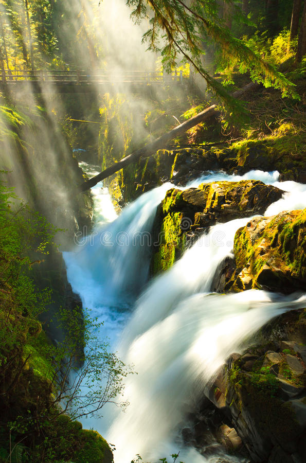 Download Morning Light Over Sol Duc Falls Stock Image - Image: 20215779