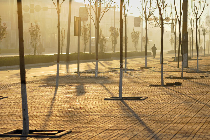 Morning light shining street royalty free stock photos