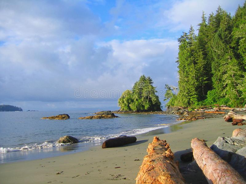 Beautiful Morning Light at Thrasher Cove, West Coast Trail, Pacific Rim National Park, Vancouver Island, British Columbia, Canada stock photography