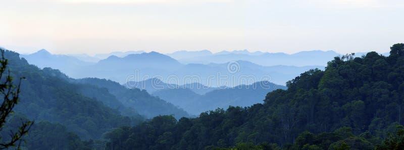 Morning mist royalty free stock photo