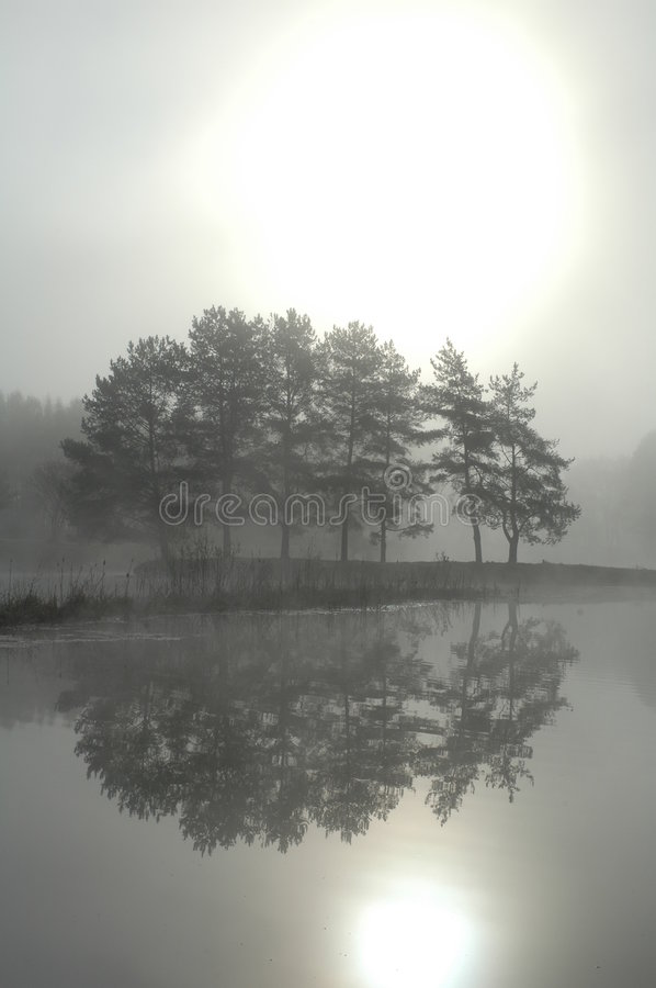Morning Mist Royalty Free Stock Photography