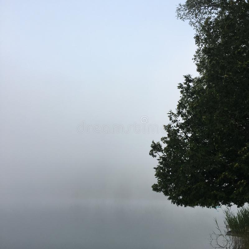 Morning mist on a lake royalty free stock photography