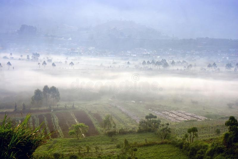 Dieng plateau wonosobo central Java Indonesia with morning mist. The natural phenomenon of morning mist on the surface of fields in the highlands of Dieng royalty free stock photography