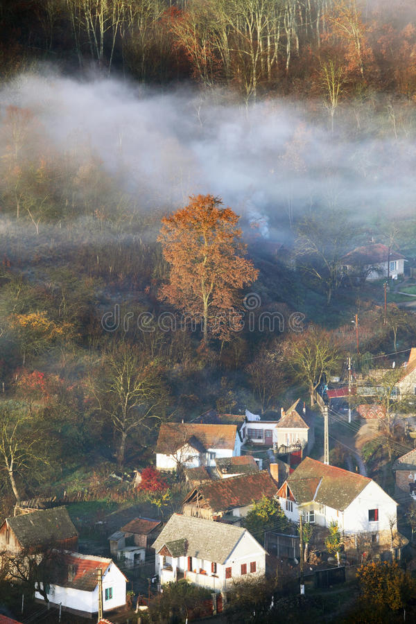 Morning mist on Mures Valley stock photography