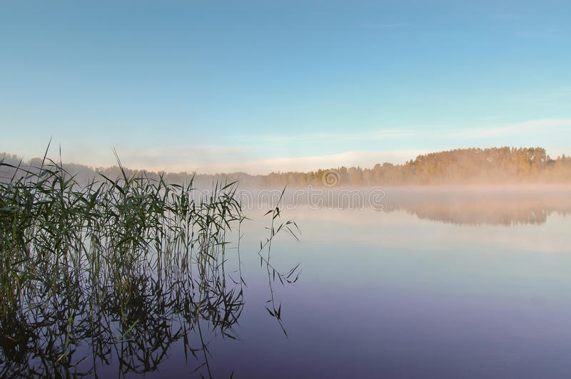 Morning mist over lake royalty free stock photography