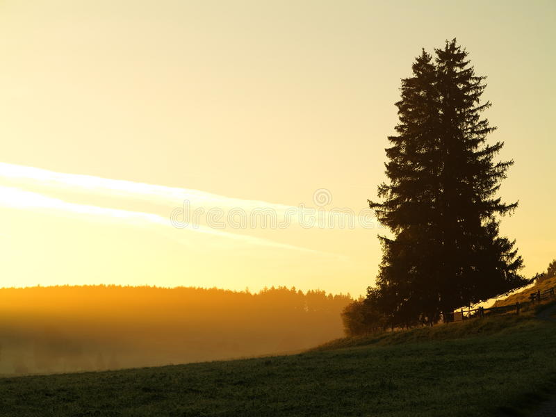 Countryside morning mist yellow sky. Rural atmosphere at fall with a sunrise coloring the sky into a bright yellow stock photography