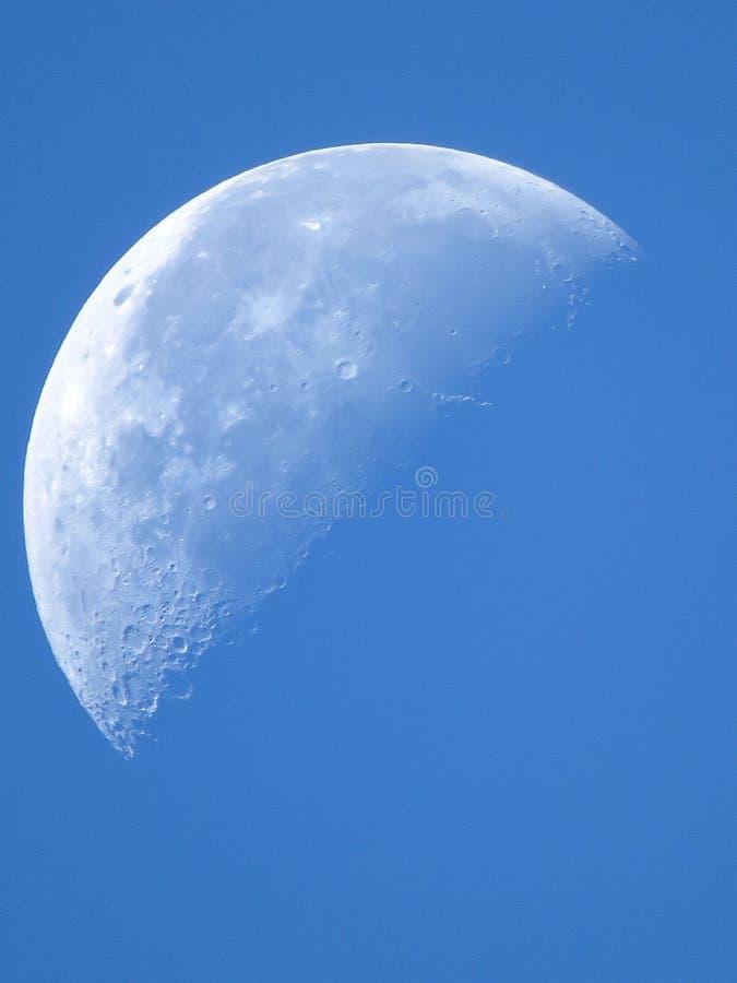 Morning moon royalty free stock image