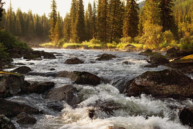 Download Morning on mountain river stock photo. Image of mountains - 14861338