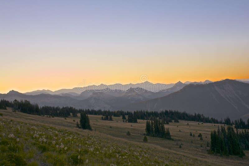 Morning at Mt. Rainier stock photography