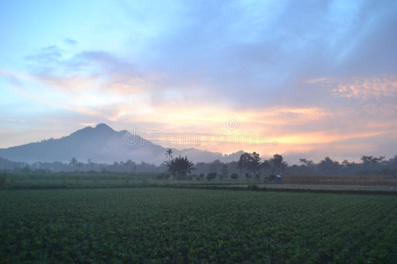 Morning in my village royalty free stock image