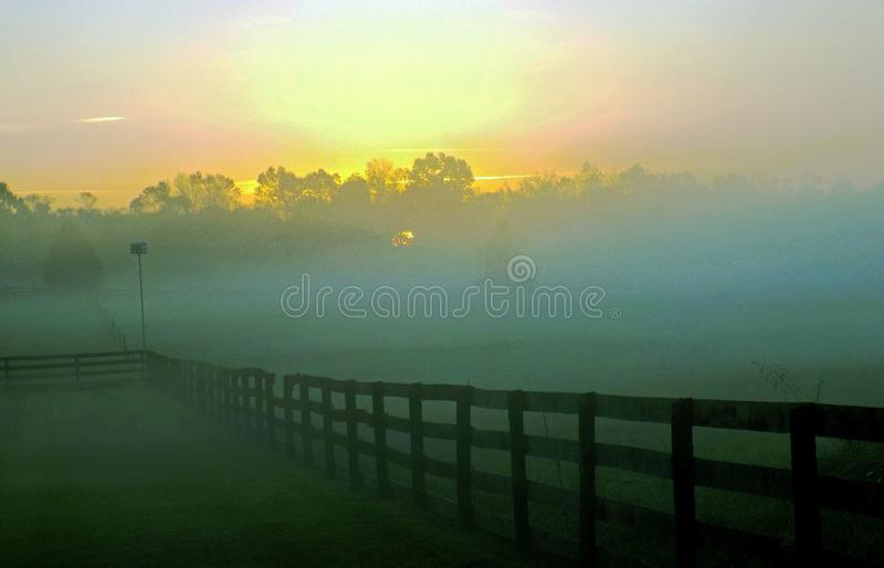Morning Pasture Free Public Domain Cc0 Image