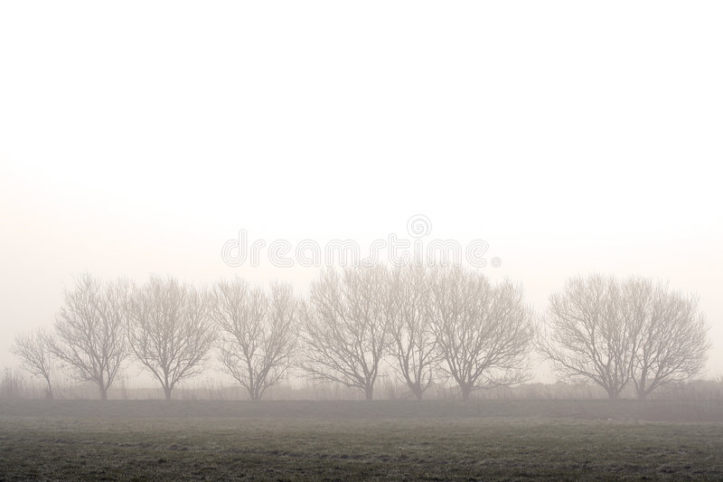 Morning peace stock images